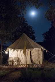 Royal Pushkar Campsの写真