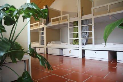 Billeder af Zim's House Hostel