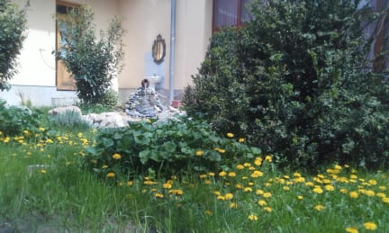 Bilder av Hostel & Guesthouse Sim Sim