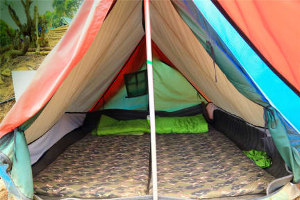 Photos de NotOnTheMap Munnar Camping