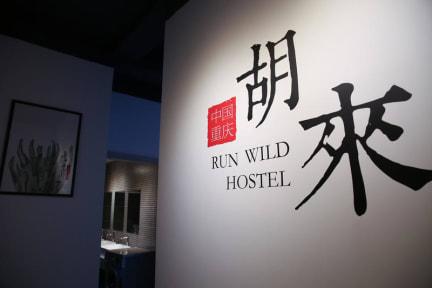 Run Wild Hostelの写真