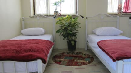 Photos de Bibi Hostel