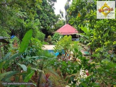 Zdjęcia nagrodzone Bambu Hostel