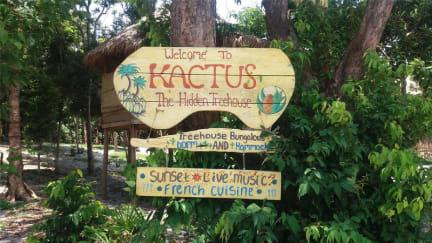 Foton av Kactus