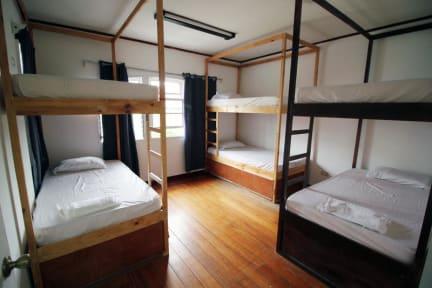 Billeder af ¡Upe! Hostel
