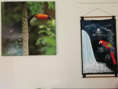 Kuvia paikasta: Petit Hotel Iguazu