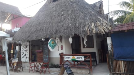 Photos of Hostel La Isla Holbox
