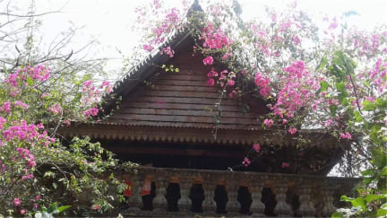 Photos de Banyan Tree