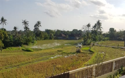 Photos de Bunga Ayu Homestay