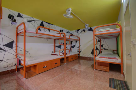 Photos of Tribe Theory Startup Hostels, Koramangala