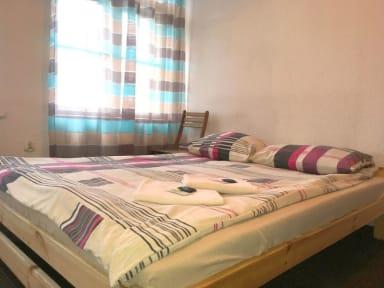 Shishkin Art Hostel照片
