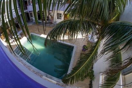 Balu Hostel. Isla Mujeres tesisinden Fotoğraflar