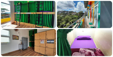 Photos of iColor Dalat Hostel