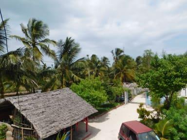 Фотографии Villa Paje Lounge