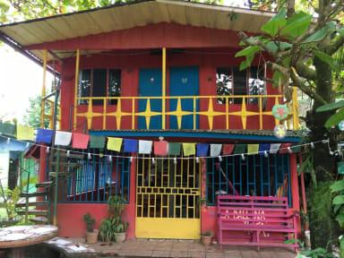 Billeder af Hostel La Ballena Roja