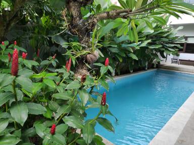 Jolie Hostel Jimbaranの写真