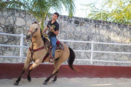 Photos of Quinta Juventina