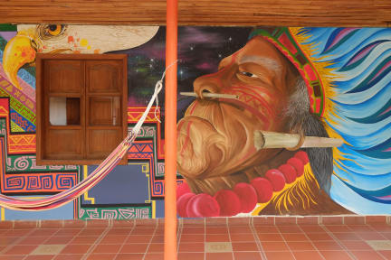 Photos of Ayahuasca Casa Artística