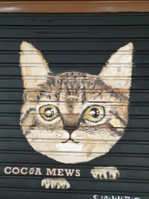 Photos of Cocoa Mews Cafe & Homestay