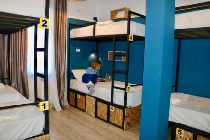Photos of City Dorm