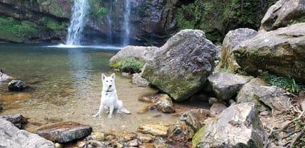 Kuvia paikasta: La Escondida Eco Parque