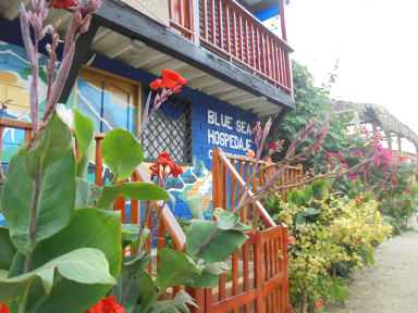 Bilder av Hostel Blue Sea