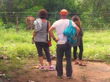 Fotky Greenwood Udawalawa Safari Resort
