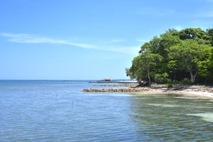 Fotky Mistica Island