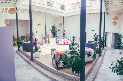Foton av South Hostel Cadiz