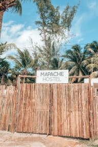 Photos of Mapache Hostel