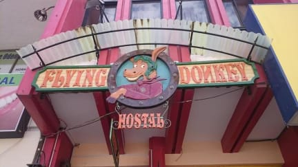 Foto di Hostal Flying Donkey