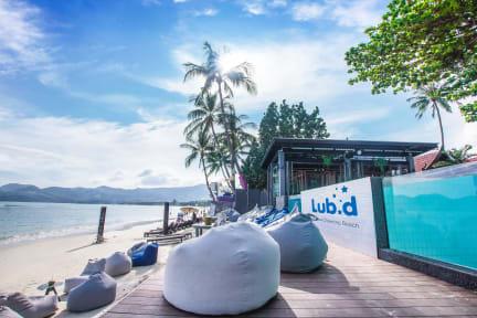 Foton av Lub d Koh Samui Chaweng Beach