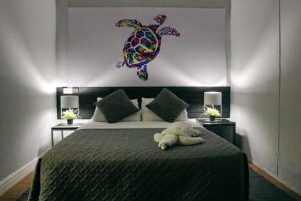 Fotos de Turtle Saving Hostel
