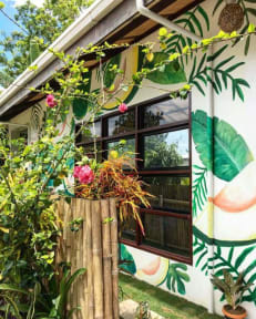 Photos of Avocado Tree Hostel