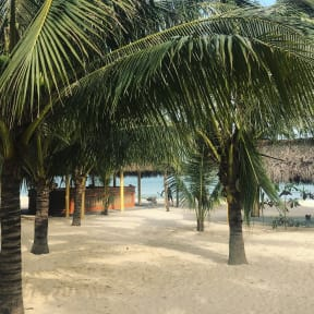 Ocean Beach Bungalows & Hostel照片