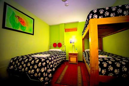 Fotos von Hostal Mirador Oro Verde