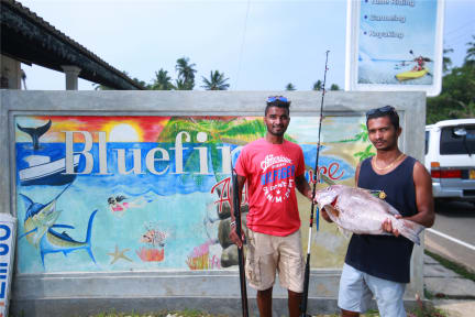 Foton av Bluefin Adventure Deep sea fishing