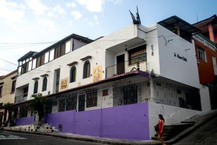 Maison Violetteの写真