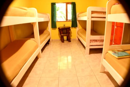 Photos of Hostel Kooch