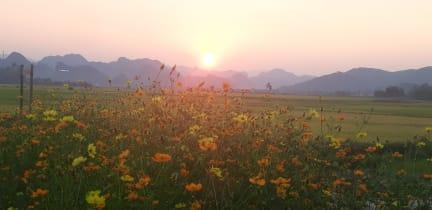 Phong Nha Palafita Bungalow照片