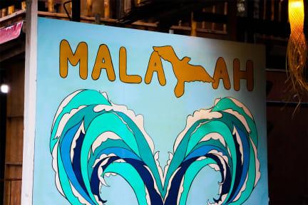 Malayah Siargaoの写真