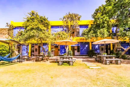 Foton av The Hosteller Pushkar