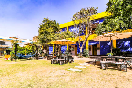 Foto di The Hosteller Pushkar