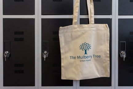 Foto di The Mulberry tree Urban Hostel