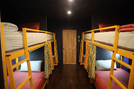 Photos de Urban Cozy Hostel