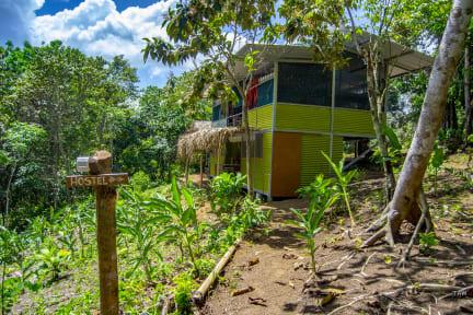 Billeder af Osa Jungle Hostel