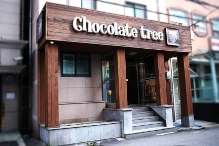 Chocolate Tree Sinchonの写真