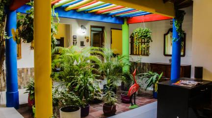 Billeder af Playa Samara Hostel