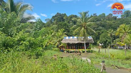 Hakuna Matata Hostal tesisinden Fotoğraflar