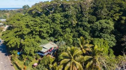 Фотографии Treetops Lodge